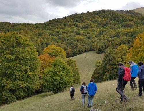 Una delegació catalana visita el Parc Nacional dels Abruços, Lazzio i Molise per compartir experiències sobre la gestió de l'os bru