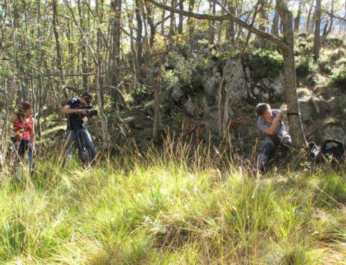 Vòs collaborar ena conservacion der os brun en Pirenèu? He-te volontari !