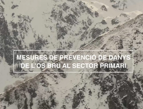 """Mesures de prevenció de danys d'os al sector primari"" (18'51"")"