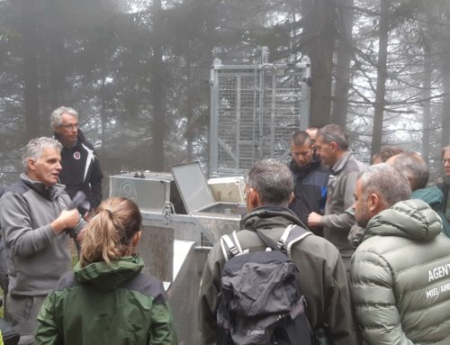 Visiting a Pyrenean delegation in Italy (in order) to exchange visions about the management of the brown bear