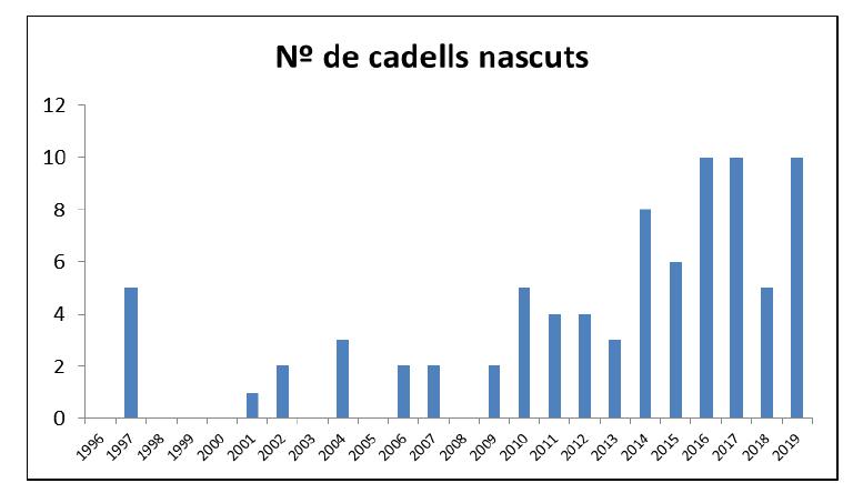 Nombre anual de cadells nascuts als Pirineus entre 1996 i 2019 (total = 45 ventrades, 82 cadells).